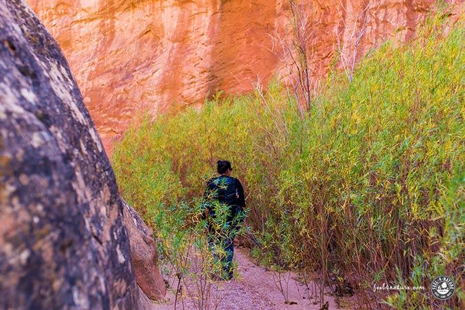 Leprechaun Canyon Abschnitt