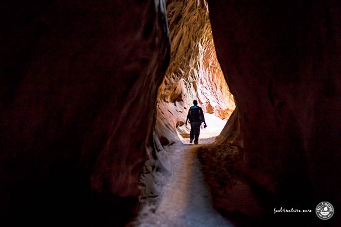 Leprechaun Slot Canyon Licht
