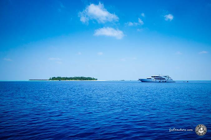 Carpe Novo Malediven