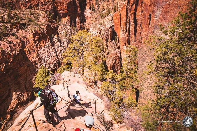 USA Reisetipps Nationalparks