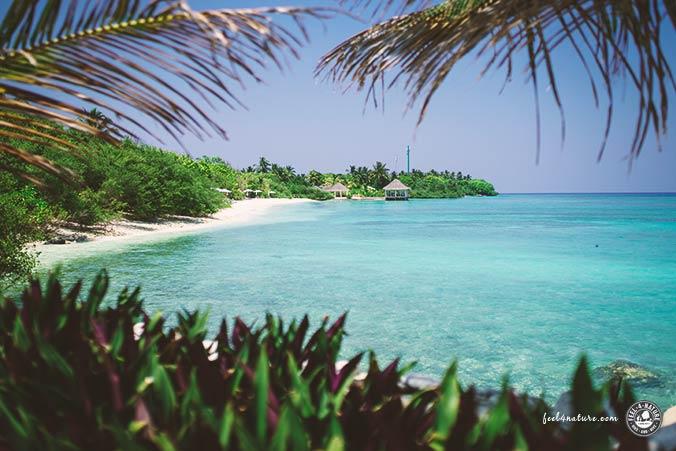 Westseite Helengeli Island