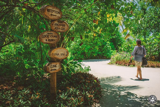 Vegetation Helengeli Malediven