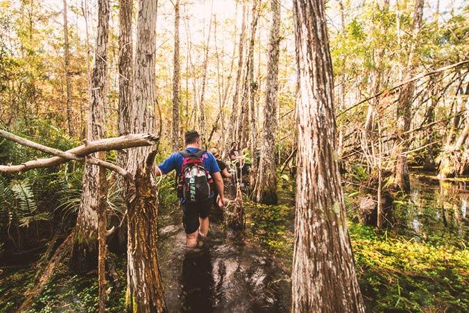 Everglades Urlaubsidee