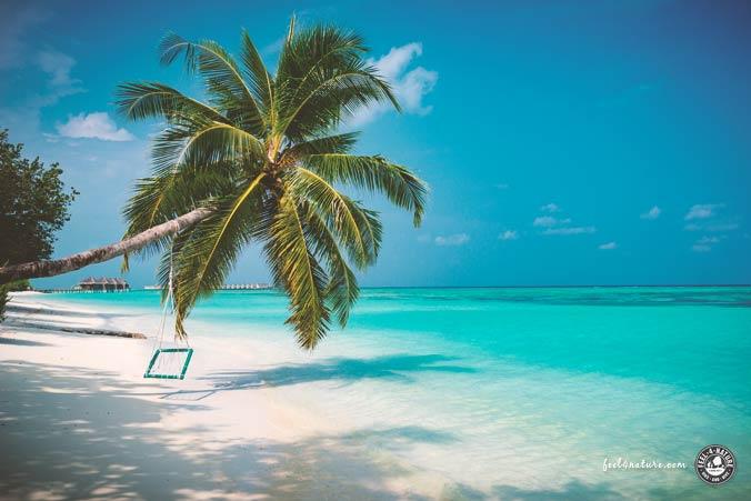 LUX Malediven