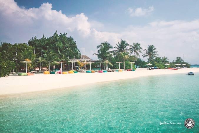 Lagoon Bar LUX Malediven