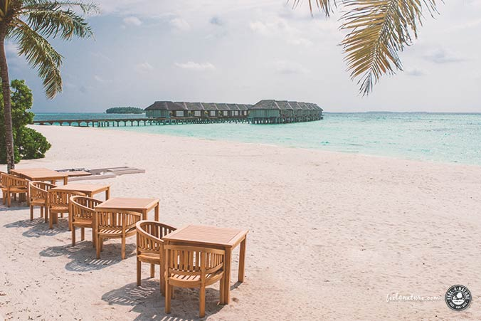 Watervillas LUX Island Malediven