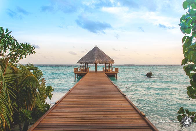 Malediven Veränderung