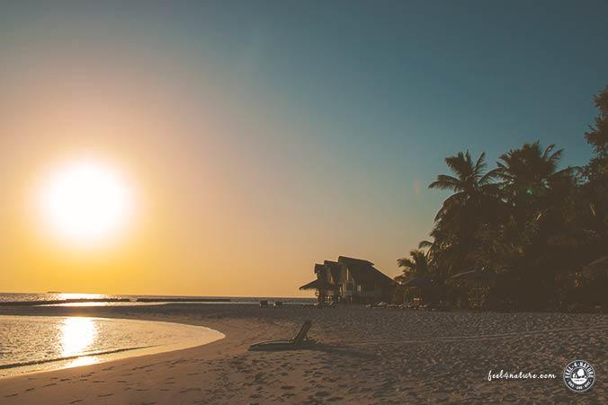 Malediven Tauchen Insel