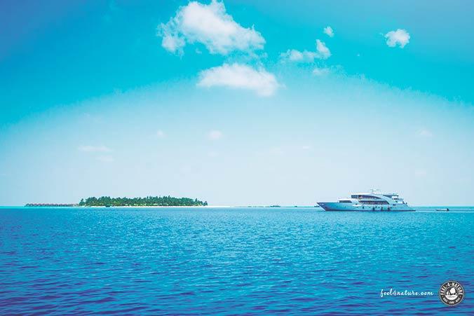 Malediven Safariboot