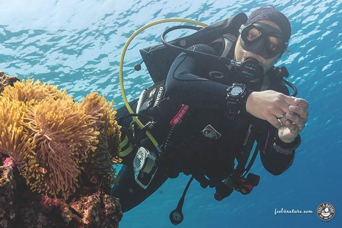 Malediven Tauchanzug