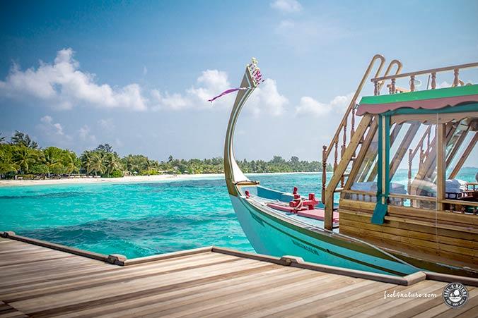 Malediven Tauchausfahrt