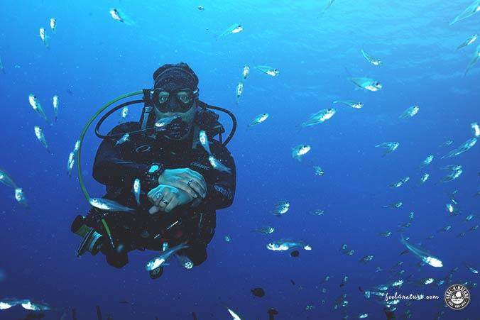 Malediven Unterwasser