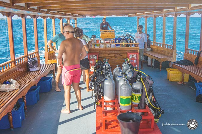 Tauchausfahrt Malediven Euro Divers