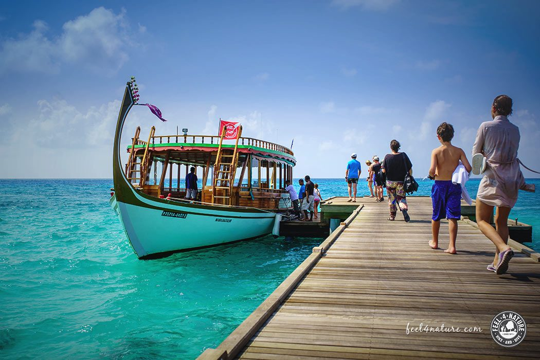 Tauchen Malediven LUX