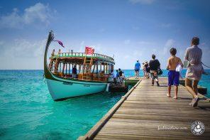 Unser Tauchurlaub bei den Euro Divers im LUX South Ari Atoll