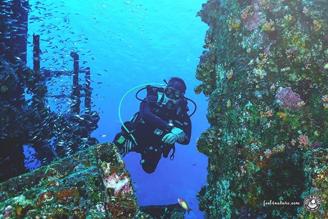 Wracktauchen Malediven