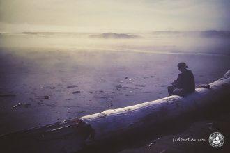 Vancouver Island Reisetipps