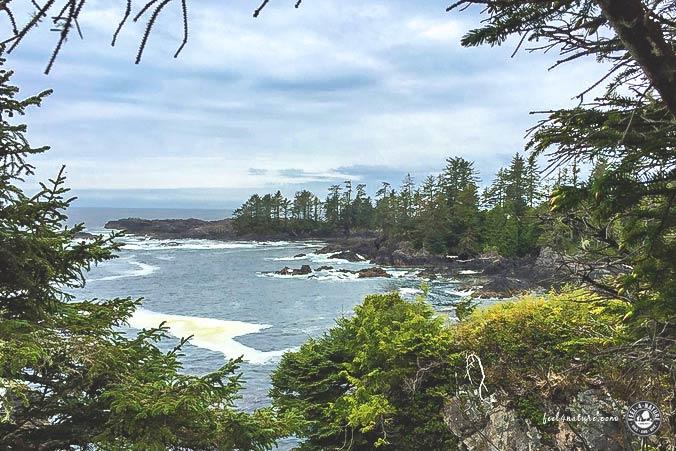 Nationalpark Vancouver Island