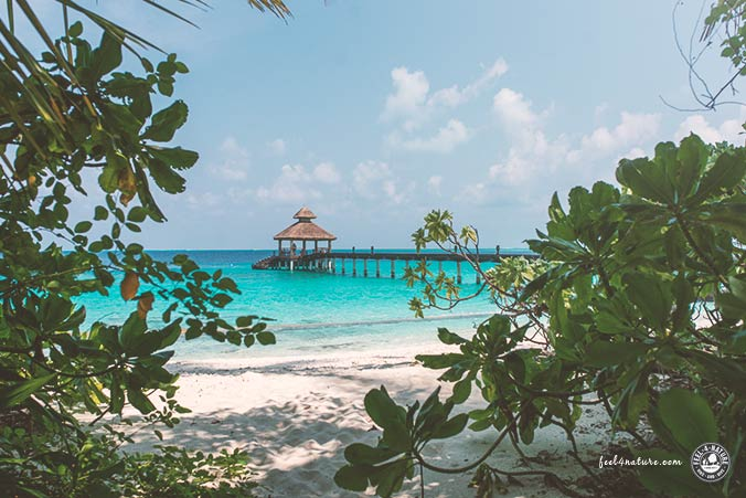 Reethi Beach Malediven