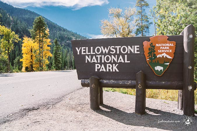 Yellowstone Nationalpark Tipps