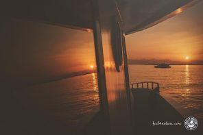 Tauchsafari Rotes Meer, 10 wichtige Tipps für Einsteiger