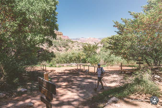 Grand Canyon Wandern 1 Tag