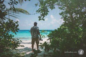 Digitale Nomaden, 10 lebenswichtige Tipps für Deinen Erfolg!