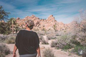 Unsere besten Tipps zum Wandern im Joshua Tree Nationalpark