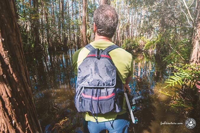 Umwelt Job bei dem man Reisen muss