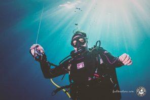 Taucheranzug – die richtige Tauchausrüstung für Einsteiger & Anfänger