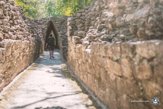 Maya Stadt Becan