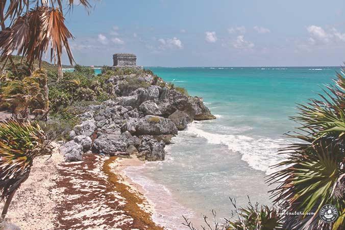 Maya Tempel Tulum