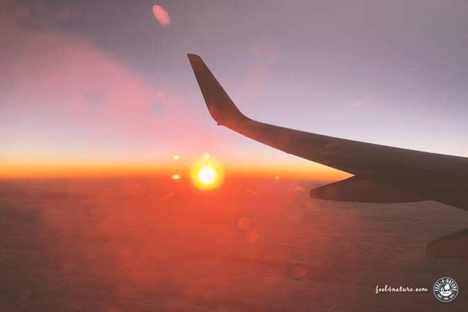 5 Hilfreiche Tipps Wenn Dein Flug Gecancelt Wurde Feel4nature