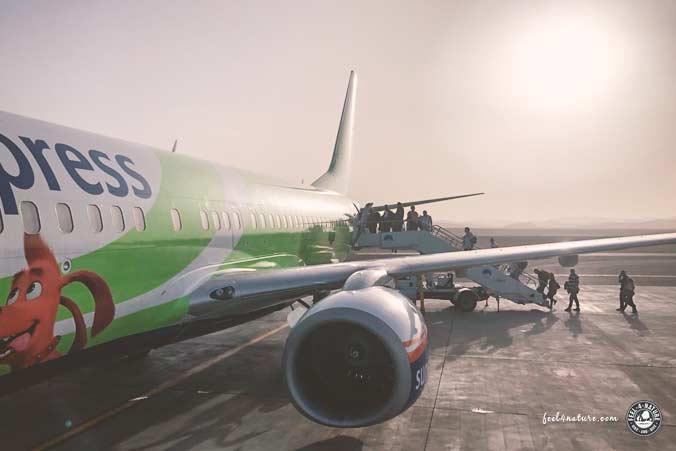 Ägypten Pauschalreise Flughafen