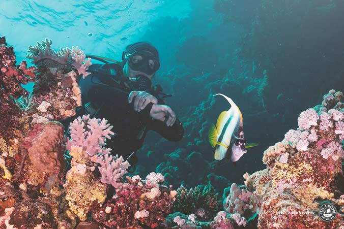 Extra Divers Equinox Hausriff