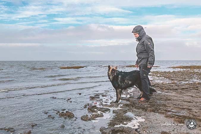 Nordsee Naturstrand
