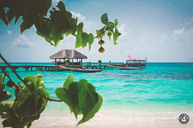 Tauchen Anfänger Urlaub