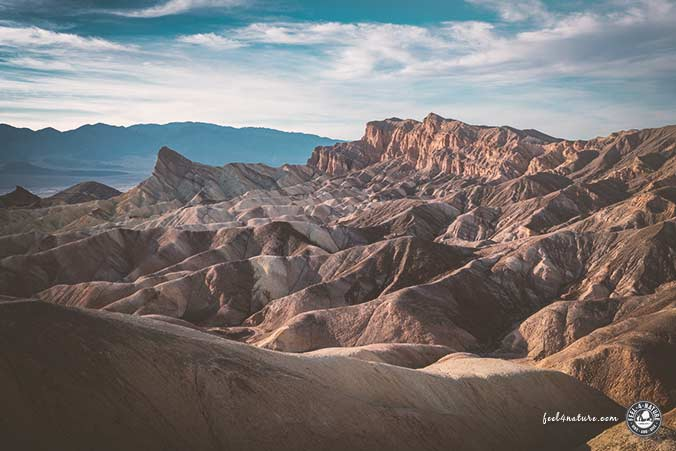 Death Valley Gower Gulch