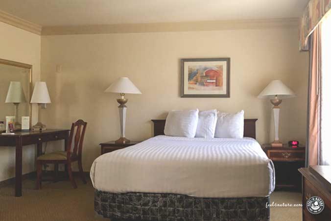 Las Vegas Alexis Park Suite
