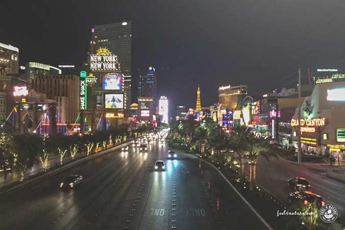 Las Vegas Hotel günstig