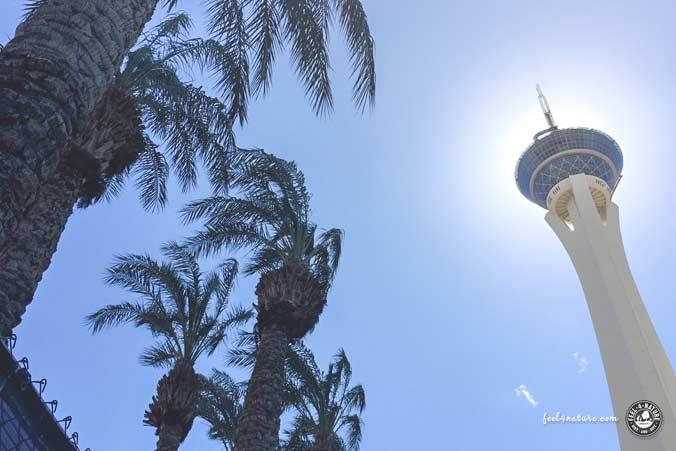 Las Vegas Stratosphere Tower Hotel