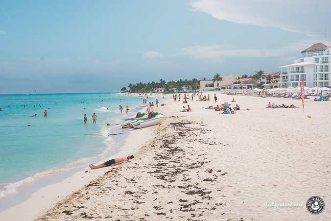 Mexiko Reiseführer Playa del Carmen