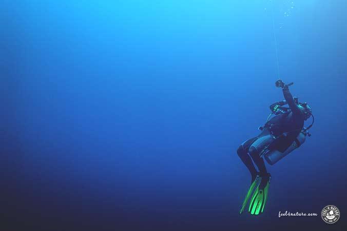 Tauchboje Blauwasser