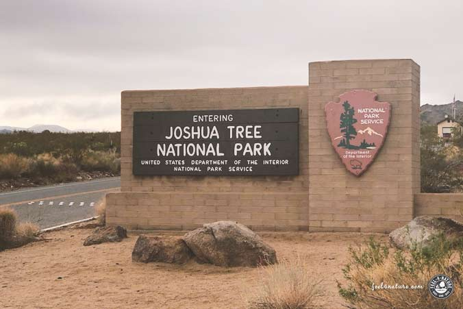 Joshua Tree Nationalpark Twentynine Palms