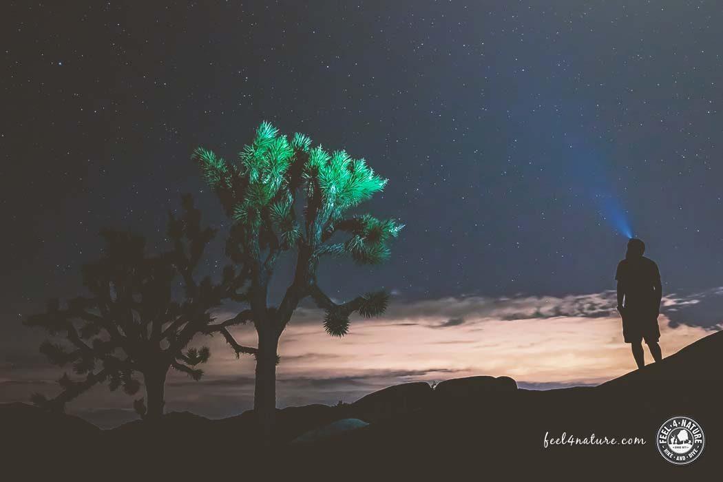 Joshua Tree National Park Übernachtung
