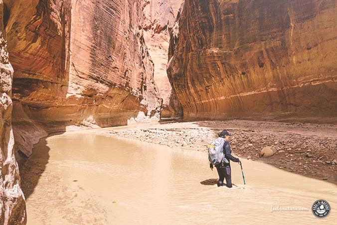 Isomatten Wandern Trekking