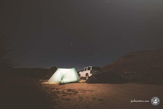 Bester Mietwagen USA Camping