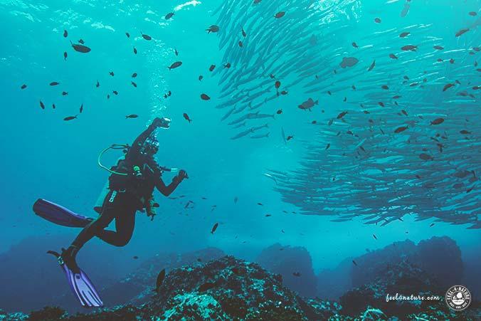 Gute Unterwasserkamera
