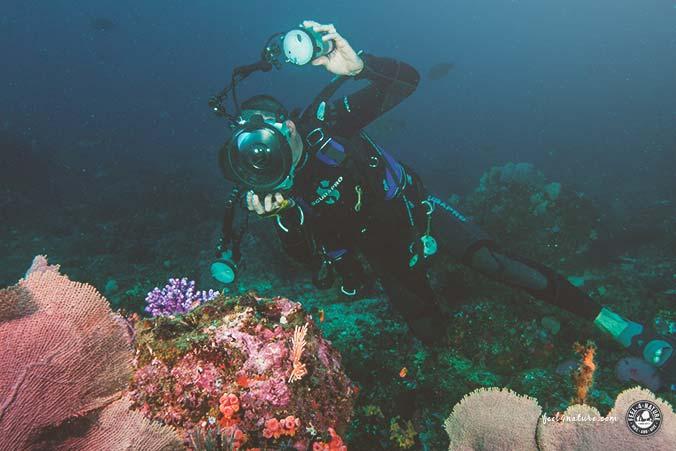 Profi Unterwasserkamera Nikon