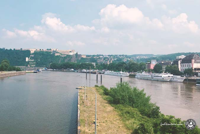 Rheinsteig Etappe Deutsches Eck